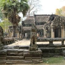 Kambodża – dzika i dziksza…